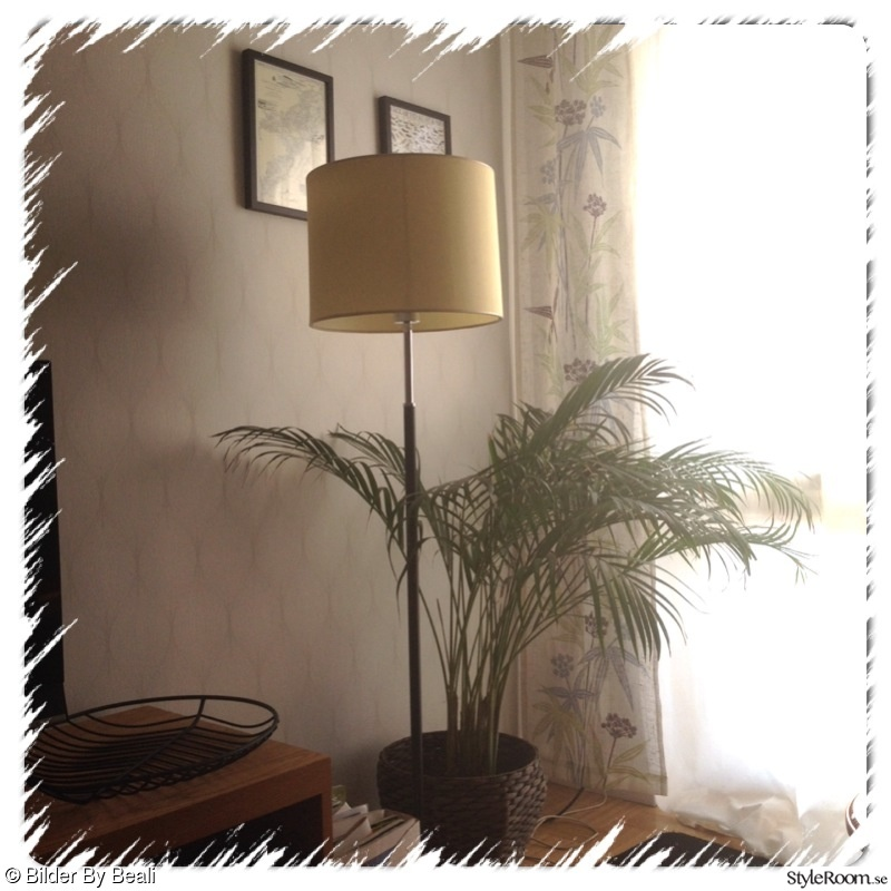 retro,vardagsrum,lampa,second hand,palm