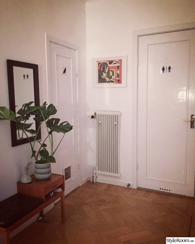 katt,hallmöbel,hall,monstera,kattlåda
