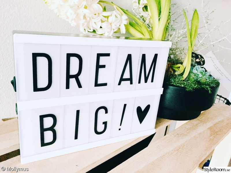 dream,lightbox,inspo,littlelovelylightbox