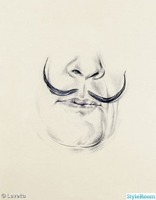 salvador dalí,mustash
