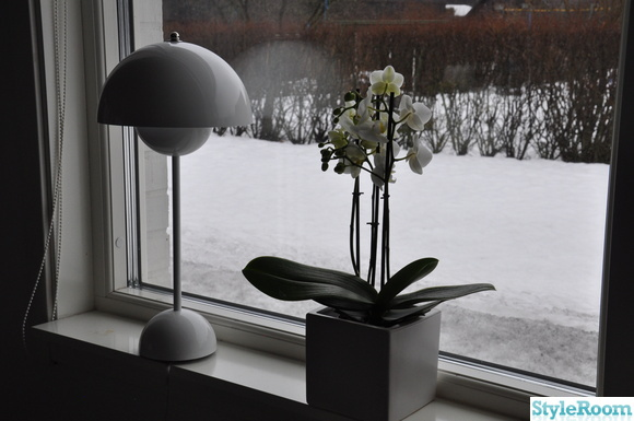 vit flower pot vp3 lampa,orkidé