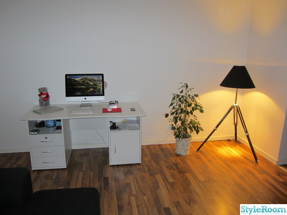 apple,imac,macbook pro,blomma,lampa